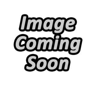 Honda Chain Guide - CRF 150 2006-20